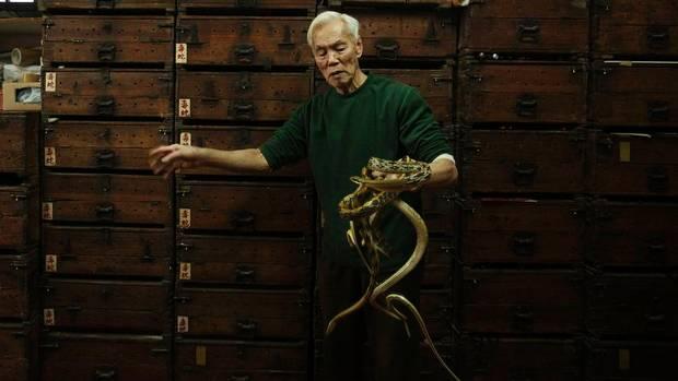 hongkong-snakes08nw1