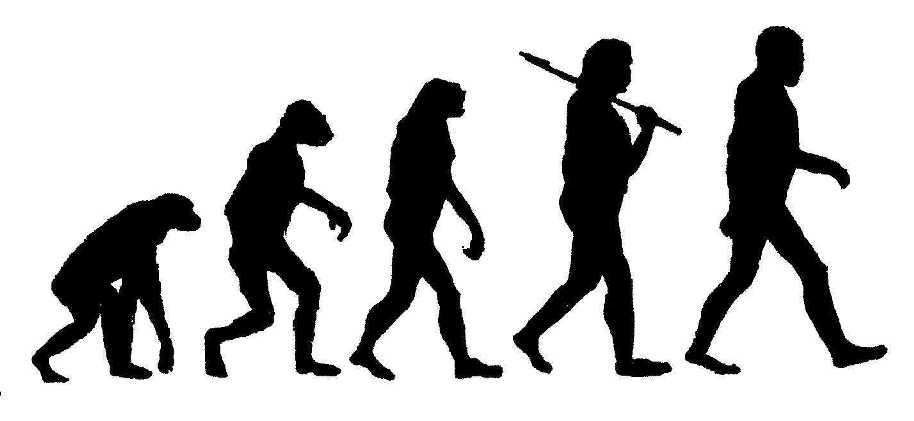 Early Man Evolution How You Portray Early Man