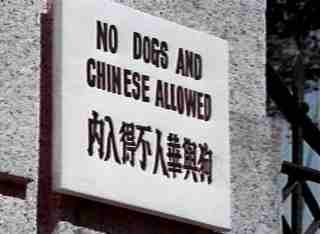 no dogs or chinese